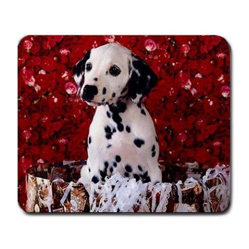 Cute dalmation puppy Large Mousepad Mouse Pad Great Gift Idea