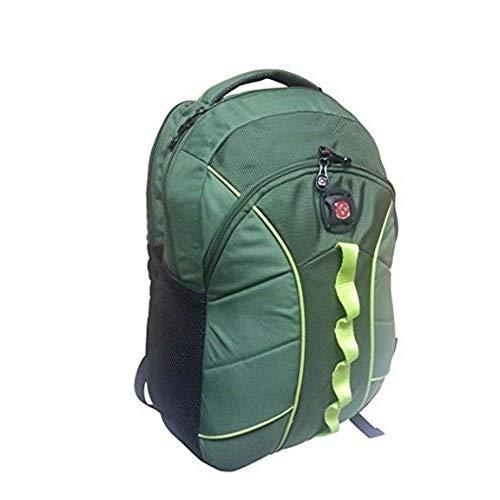Swissgear Sg-2803060 The Sun Computer Backpack, Olive Green, 16 Inches