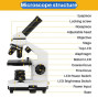 200X-2000X Microscopes For Kids Students Adults, With Microscope Slides Set, Phone Adapter, Powerful Biological Microscopes For School Laboratory Home Science Education