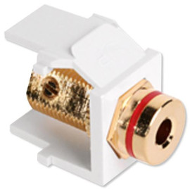 Leviton QuickPort Banana Jack Snap-In Connector, Red Stripe, White